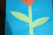Wiosenny-kwiat-Zosi-B.